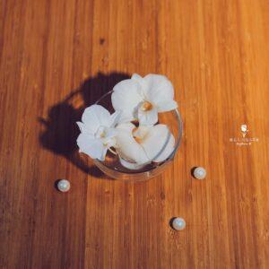 不凋花-鮮花自製-蝴蝶蘭花